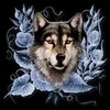 wolfpupable's Avatar